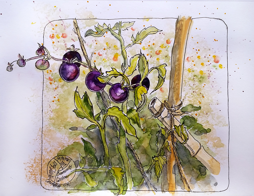 sketch of bamboo and purple tomatoes