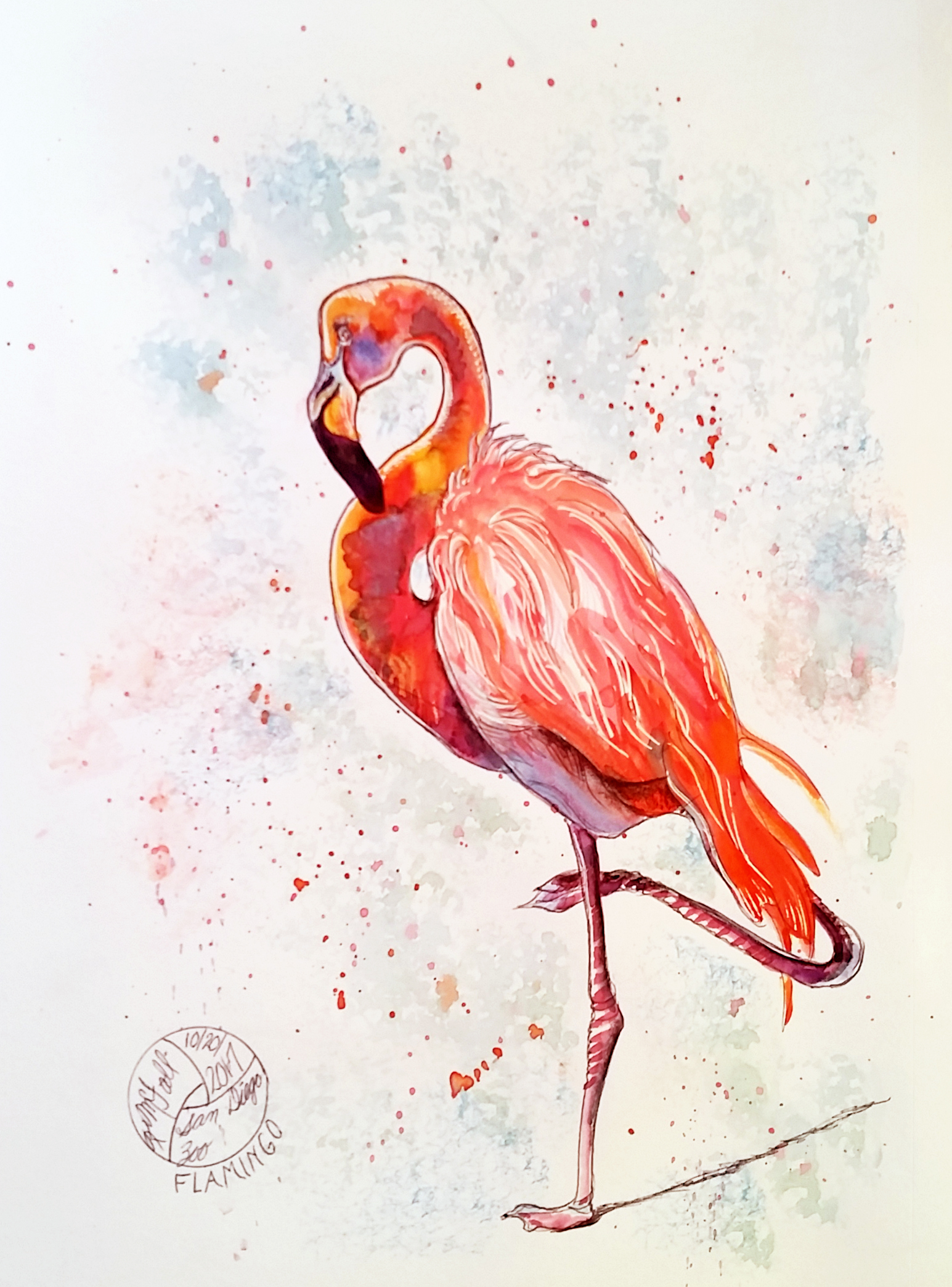 flamingo on one leg, painting and ink