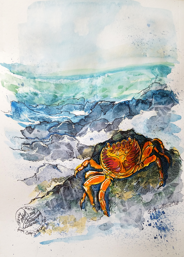 painting of crab on rocks above sea