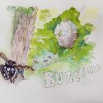bald faced hornets buzzing around nest