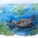 painting of adolescent duck hen