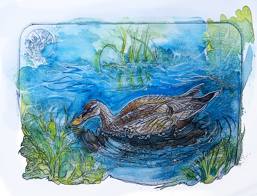 painting of adolescent duck hen
